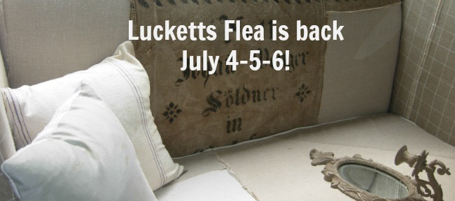 lucketts flea back